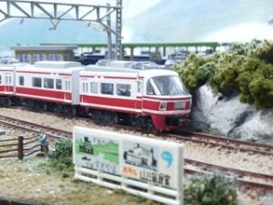 s-P1180078