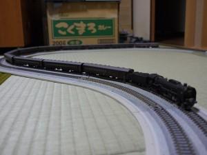 s-P1180620