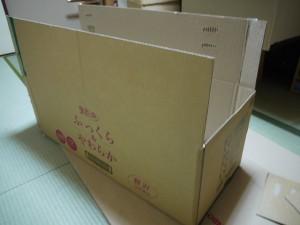 s-P1180933