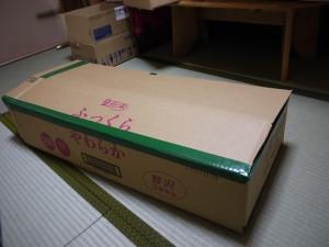 s-P1180938